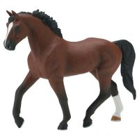 BR Thoroughbred Mare At