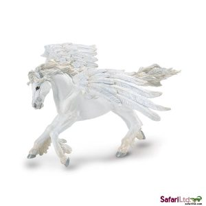 MR Pegasus